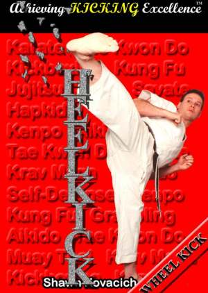Book review Wheel Kick (Achieving Kicking Excellence, Vol. 2) by Shawn Kovacich