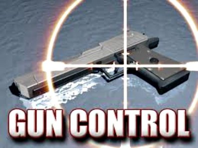 Why gun control is not a solution